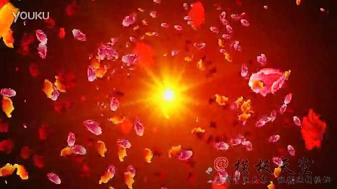 大红牡丹花瓣飘落led动态大屏幕视频背景素材婚庆晚会演出舞台_高清